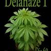 Delahaze
